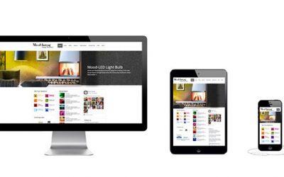 Jasa Pembuatan Website di Madiun Rp350.000,-