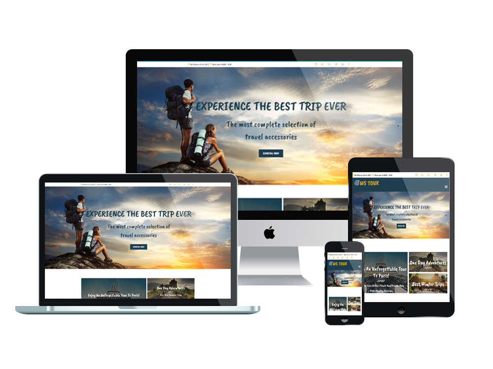website tour and travel profesional