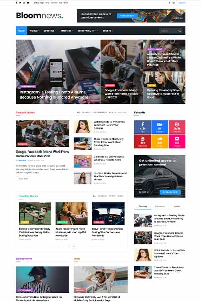 demo website berita 2